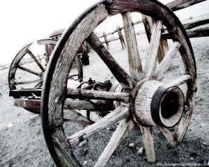 100_0762_wheel.jpg
