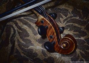_MG_3023_violin.jpg